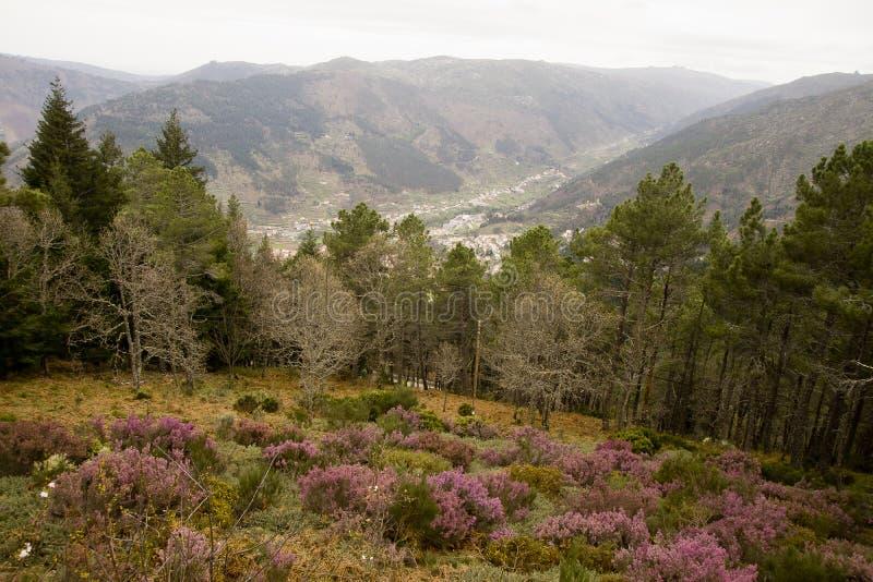 葡萄牙的风景 免版税库存照片