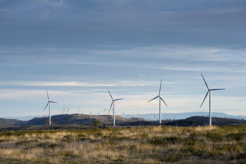 葡萄牙阿鲁卡地质公园风车 库存照片