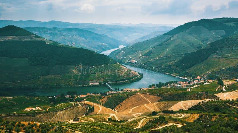 葡萄牙 河顶视图和葡萄园是在小山 免版税库存照片