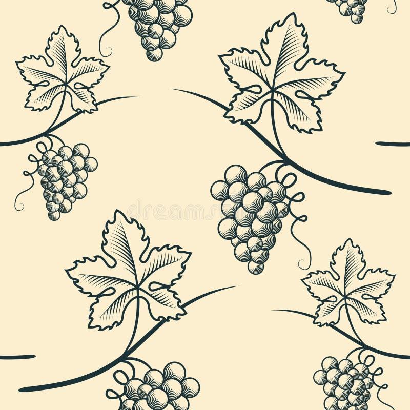 葡萄的无缝的样式 葡萄酒传染媒介 库存图片