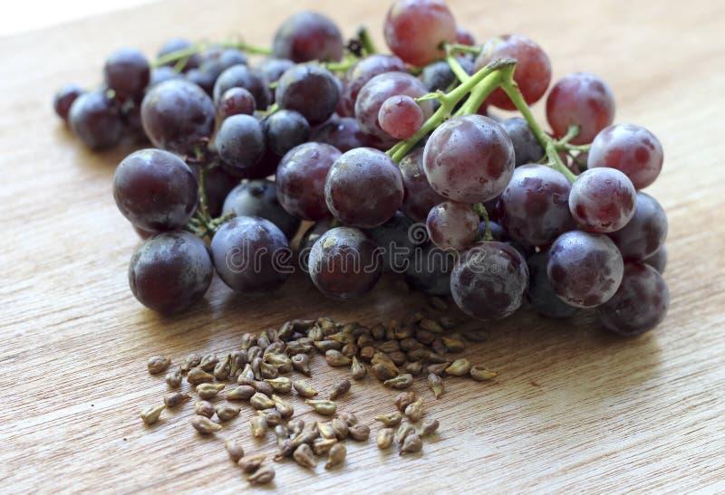 葡萄种子 免版税库存图片