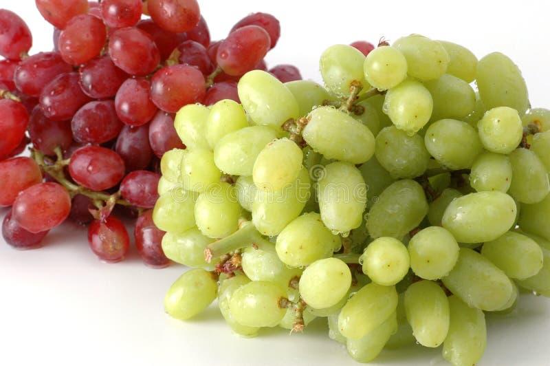 葡萄绿色红色 免版税库存图片