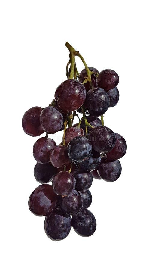 葡萄被隔绝的新红色食物背景 免版税图库摄影