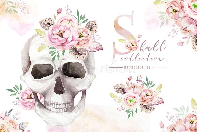 葡萄酒与头骨和玫瑰,野花,在白色在boho样式的手拉的例证的水彩卡片隔绝的 皇族释放例证