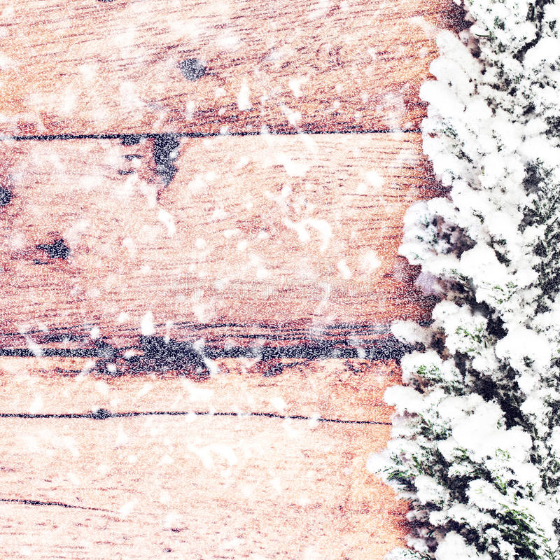葡萄酒与用在木的雪盖的杉树的圣诞卡 库存照片