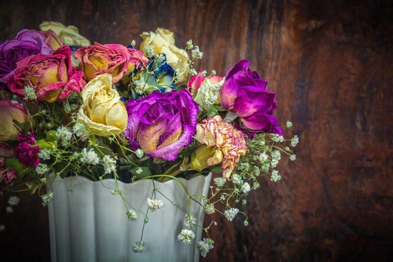 葡萄酒五颜六色的被保存的花 库存照片