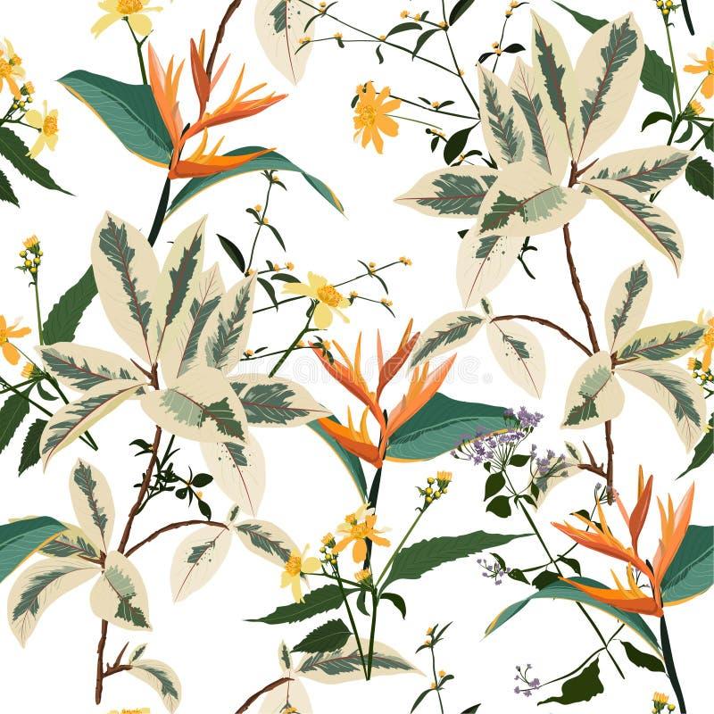 葡萄酒传染媒介无缝的美好的艺术性的明亮的热带样式有异乎寻常的森林五颜六色的原始的时髦的花卉背景 向量例证