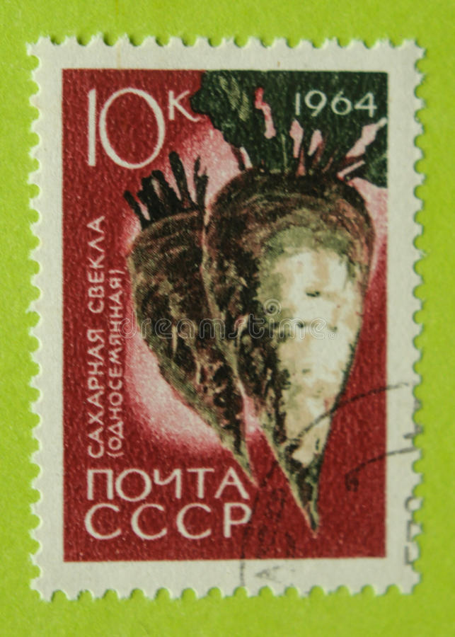 葡萄酒俄罗斯邮票 免版税库存图片