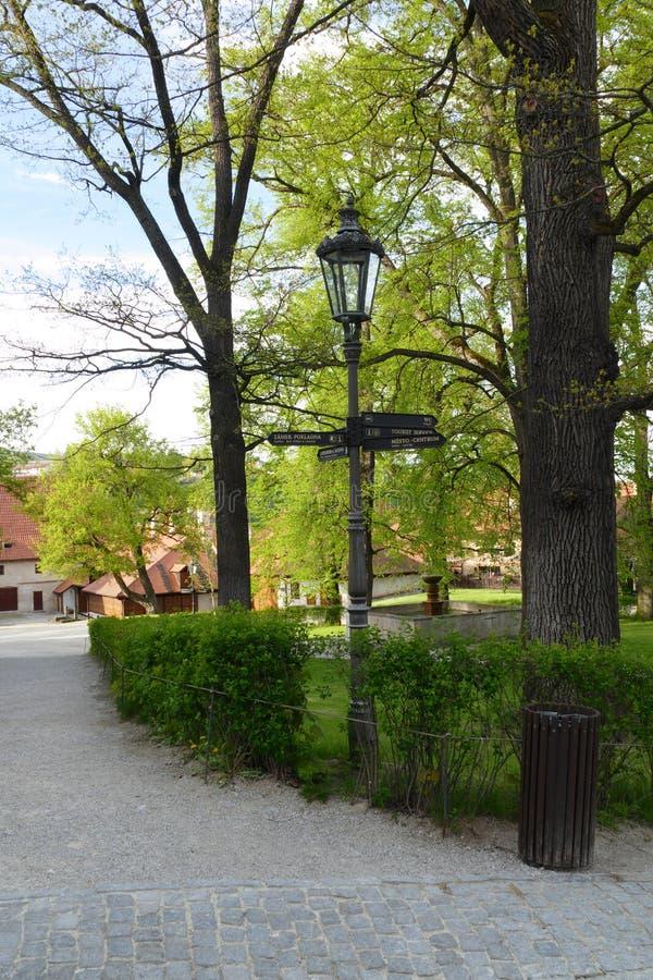 葡萄酒公园灯 免版税图库摄影