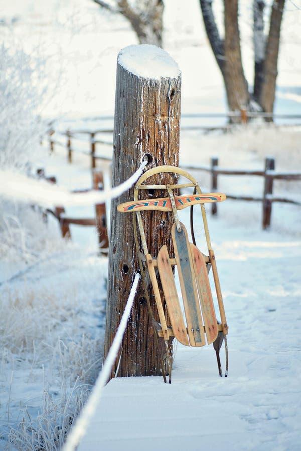 葡萄酒冬天雪撬 库存图片