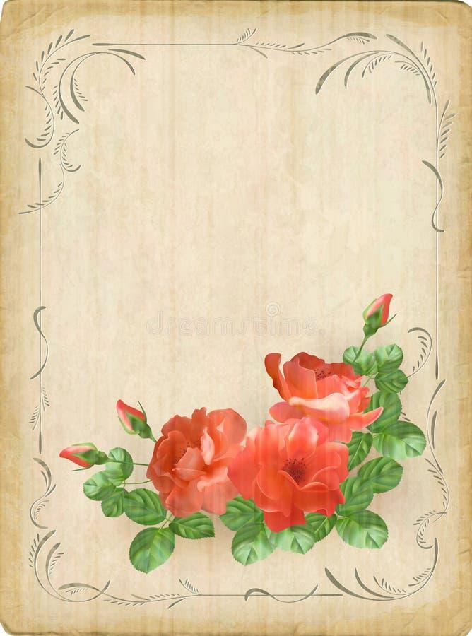 葡萄酒减速火箭的花玫瑰明信片边界框架 皇族释放例证