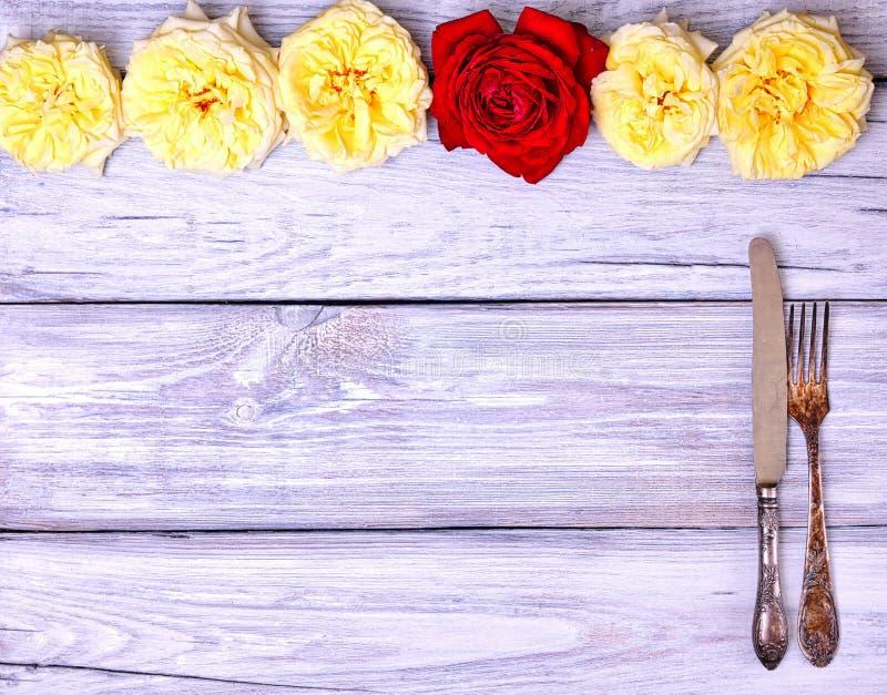 葡萄酒利器叉子和刀子 免版税库存图片