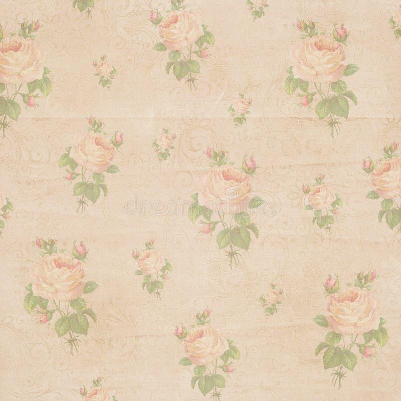 葡萄酒古色古香的纸破旧的玫瑰色花纹理 免版税图库摄影