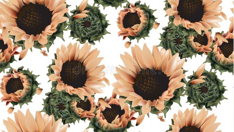 葡萄酒向日葵无缝的样式背景传染媒介 美丽的春天夏天卡片 3d详细的纹理例证 库存例证