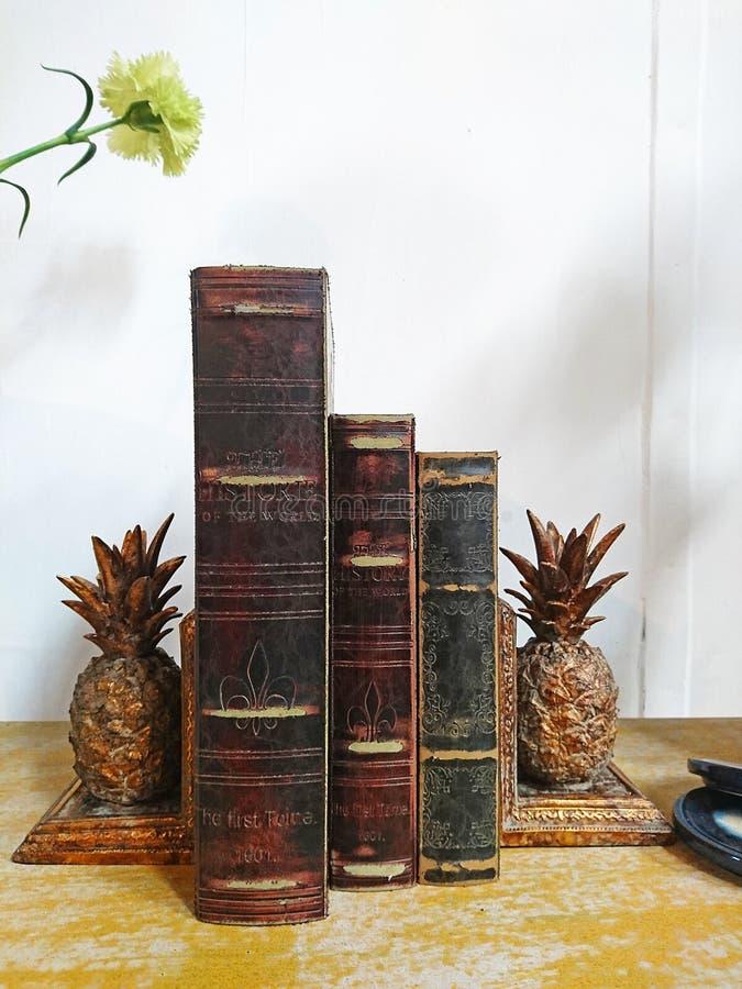 葡萄酒在家庭书库的书架 库存图片