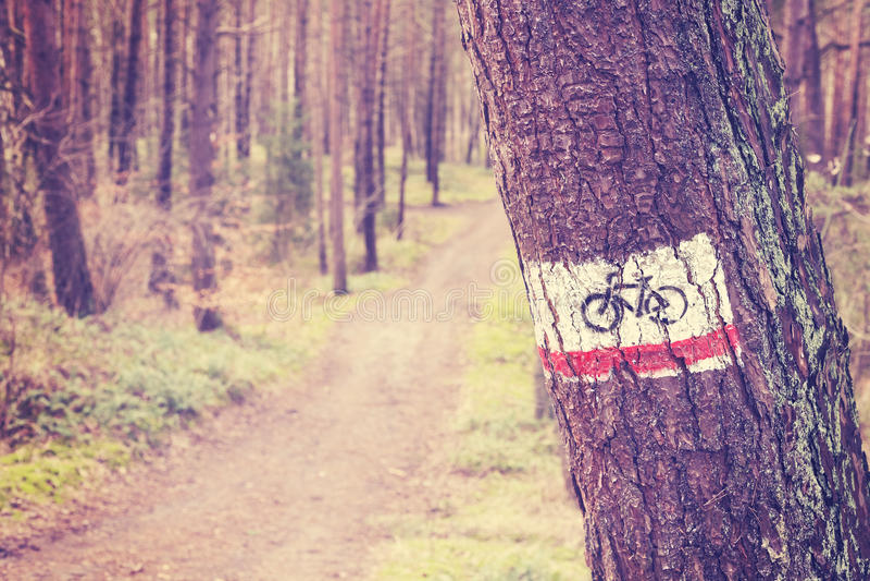 葡萄酒在森林里定了调子自行车在一棵树绘的足迹标志 库存图片