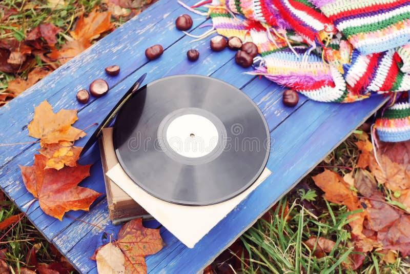 葡萄酒在秋天秋叶背景的唱片 免版税库存照片