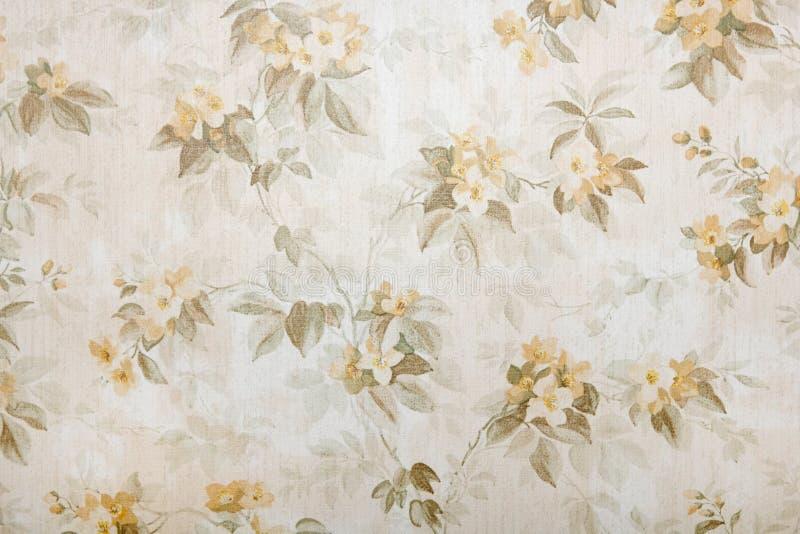 葡萄酒墙纸有花卉样式背景 库存照片
