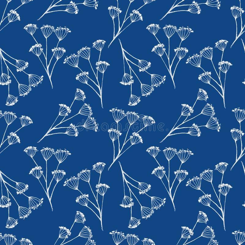 葡萄酒墨水无缝的样式,在蓝色背景的白色干燥伞花 库存例证