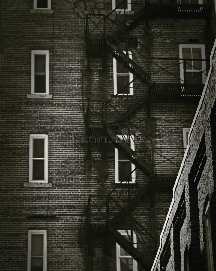 葡萄酒大厦服务梯子 免版税库存照片