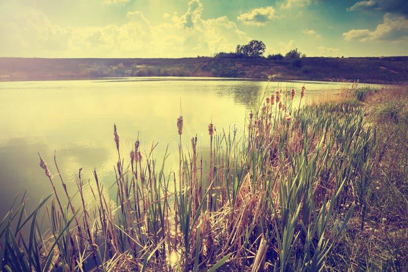 葡萄酒定了调子湖的图象 免版税库存图片