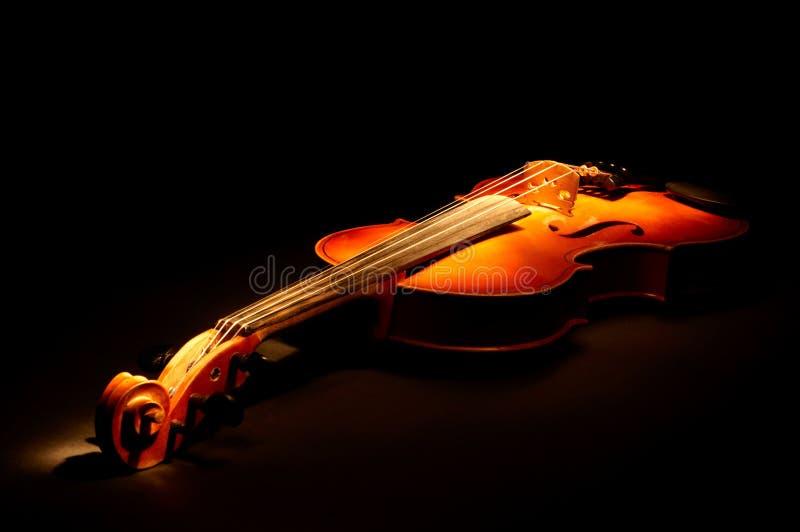 葡萄酒小提琴 库存图片