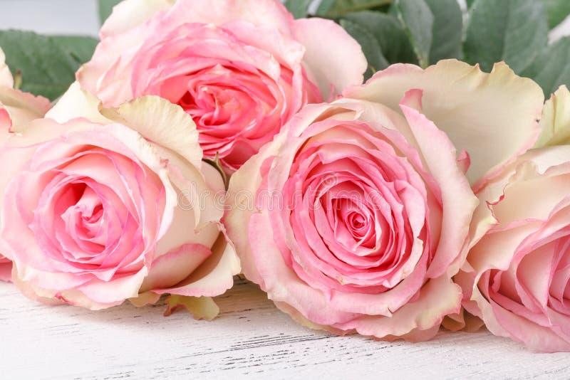 葡萄酒小组在木桌,软的焦点上的桃红色玫瑰 免版税库存图片
