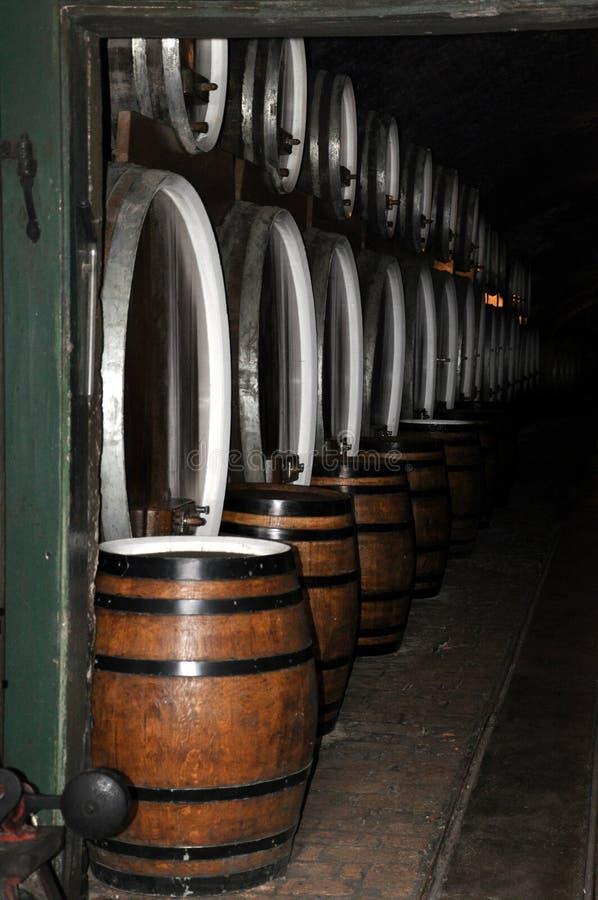 葡萄酒库在伊洛克酿酒厂,克罗地亚滚磨 库存图片