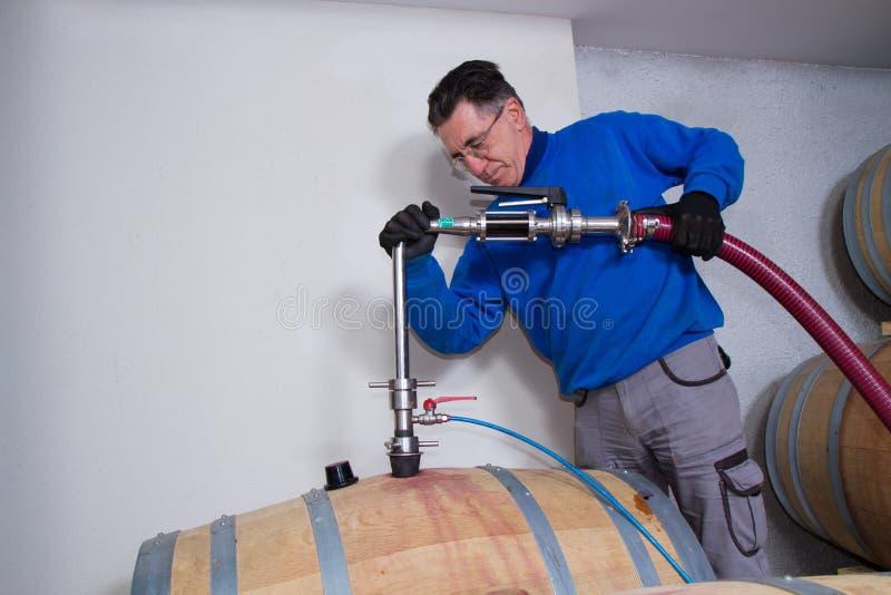 葡萄酒库酿酒商 免版税库存照片