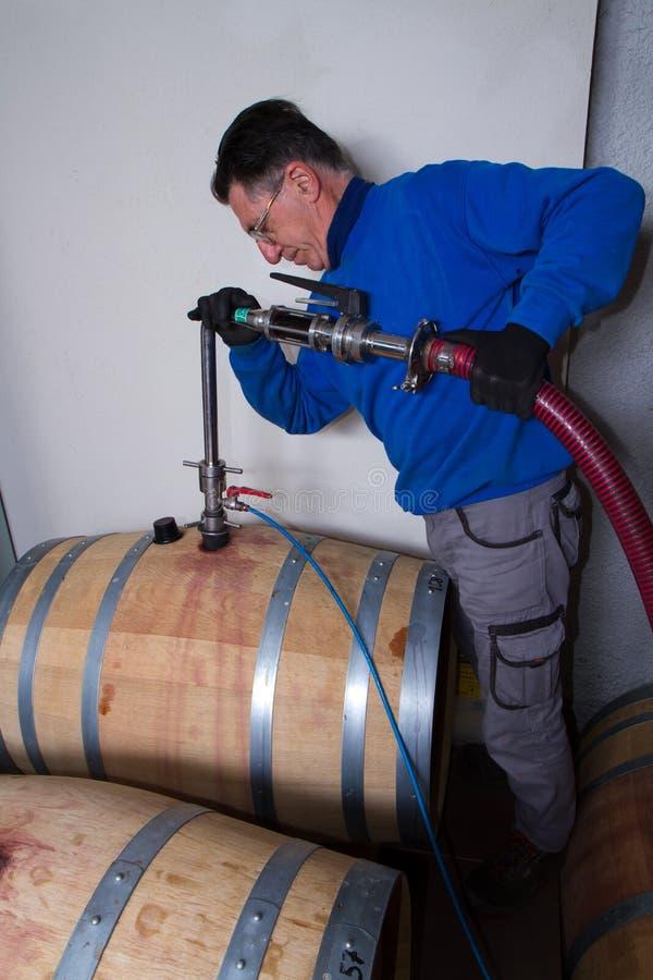 葡萄酒库酿酒商 免版税库存图片