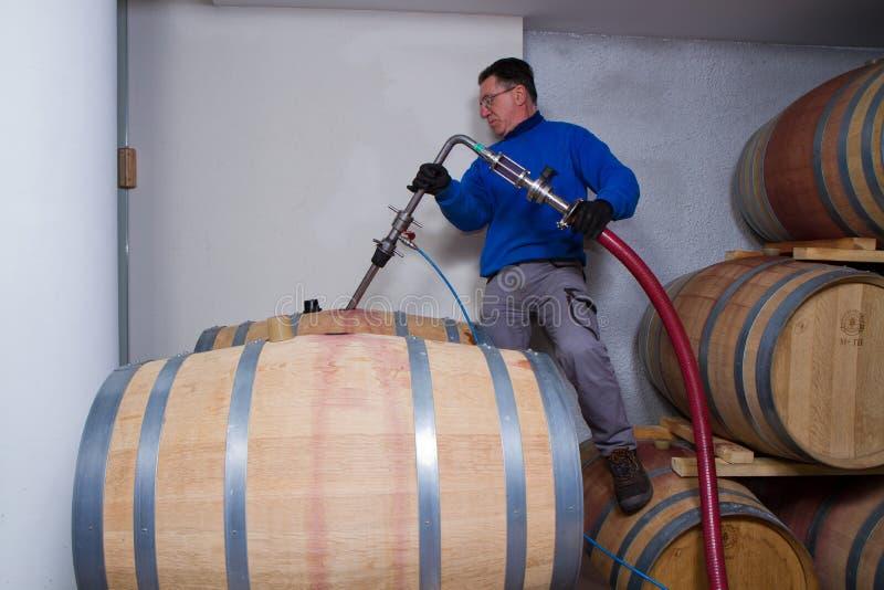 葡萄酒库酿酒商 库存照片