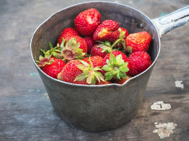 葡萄酒成熟草莓在一个长木凳的村庄庭院里采摘了户外 免版税图库摄影