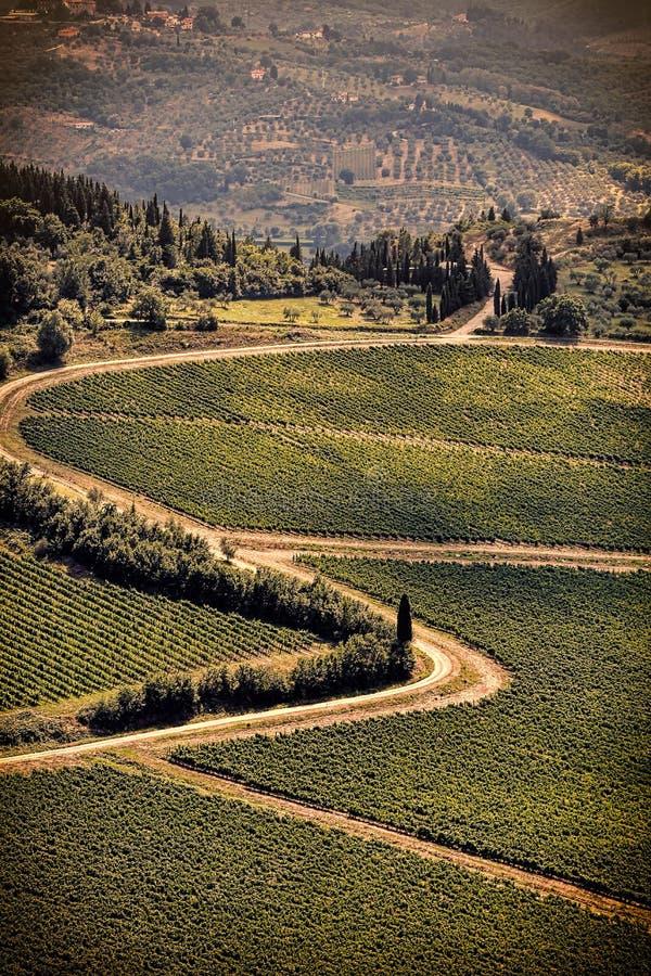 葡萄酒托斯卡纳的视图小山有葡萄园的 免版税库存图片