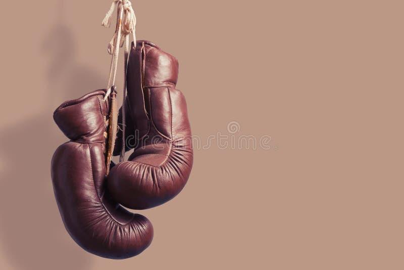 葡萄酒拳击手套,垂悬 库存图片