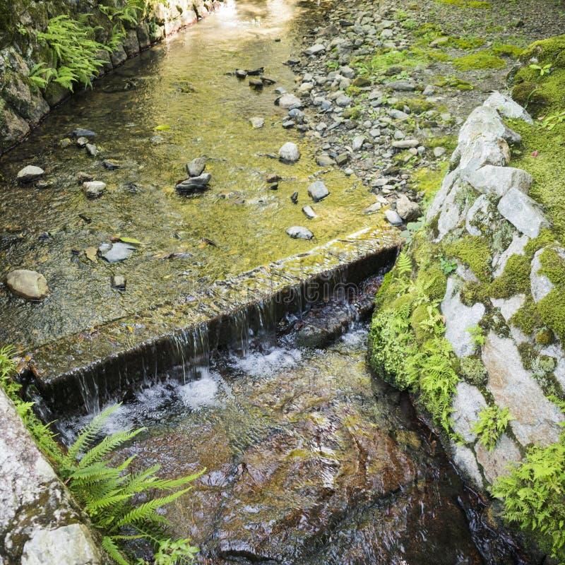 葡萄酒有具体床的河运河和流动的水细节在京都,日本 免版税库存图片