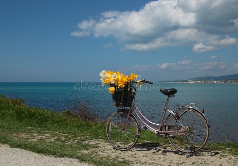 Download 葡萄酒有花的妇女的自行车在晴朗的sprin的海边 库存图片. 图片 包括有 照亮, 海滨, 绿色, 五颜六色 - 72365245