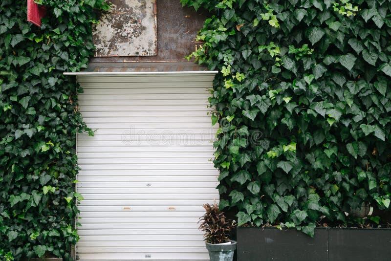 葡萄酒有藤的样式商店外部在日本 图库摄影