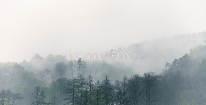 葡萄酒有雾的风景,有云彩的森林 免版税库存照片