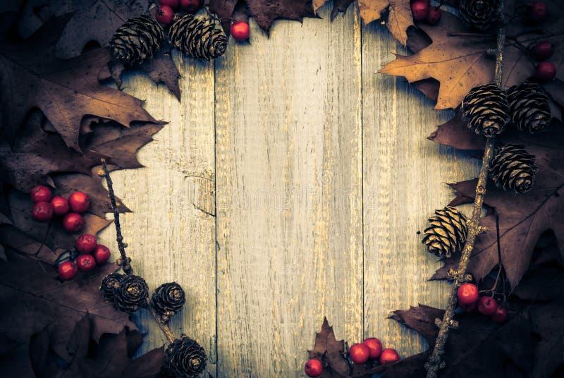 葡萄酒构成秋天果子安排了圈子木backgrou 库存图片