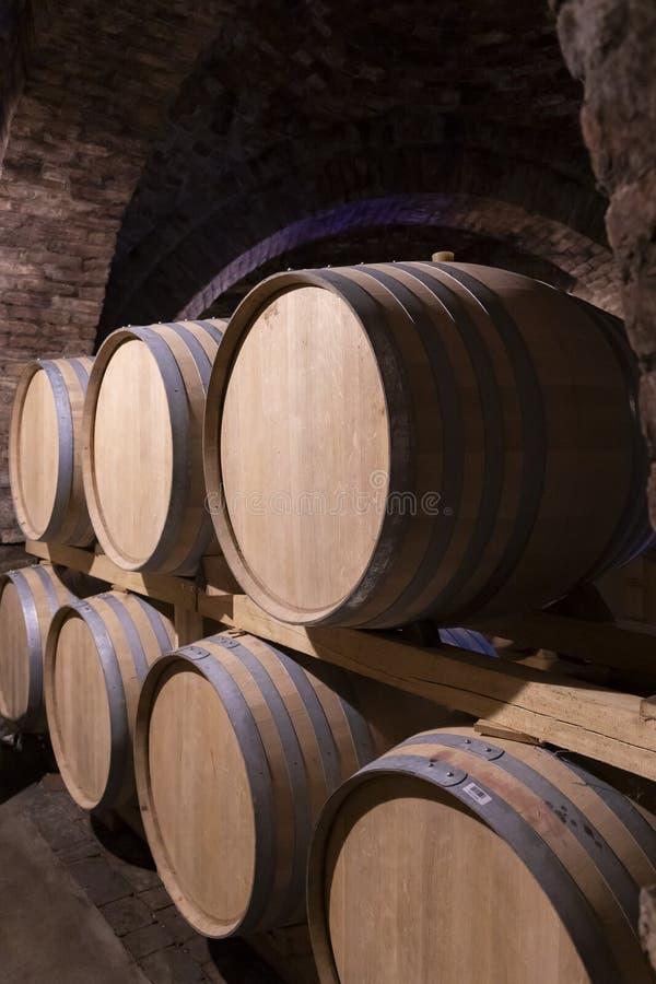 葡萄酒桶在地窖,塞克萨德,匈牙利里 库存图片
