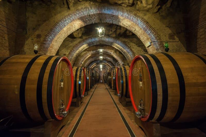 葡萄酒桶(botti)在蒙特普齐亚诺地窖,托斯卡纳里 免版税库存照片