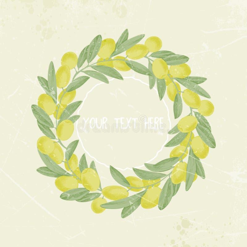 葡萄酒橄榄树枝图象框架,花圈,文本的地方 向量Illustratio 库存例证