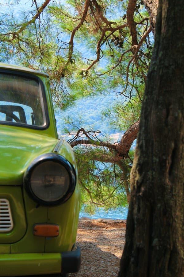 葡萄酒汽车在常青树下 免版税库存照片
