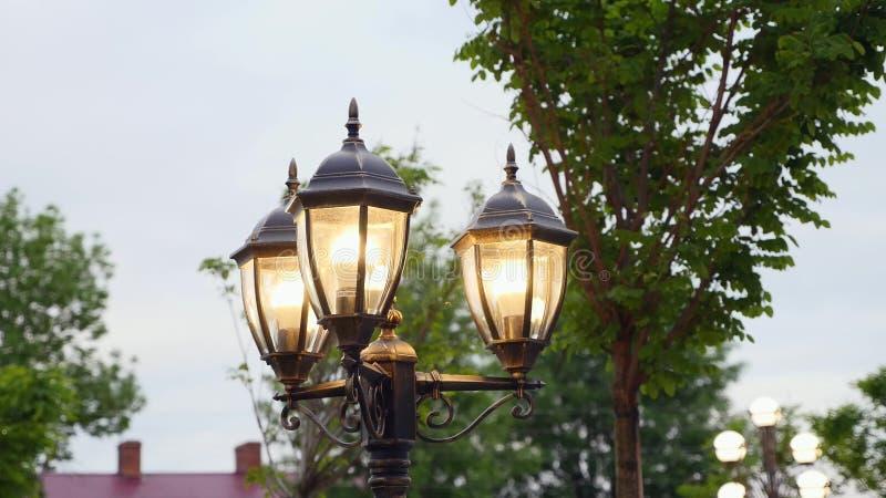 葡萄酒灯岗位街道路灯柱 免版税库存照片