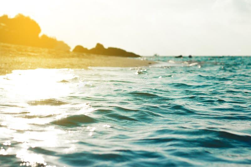 葡萄酒热带海滩和海假期背景的 免版税图库摄影