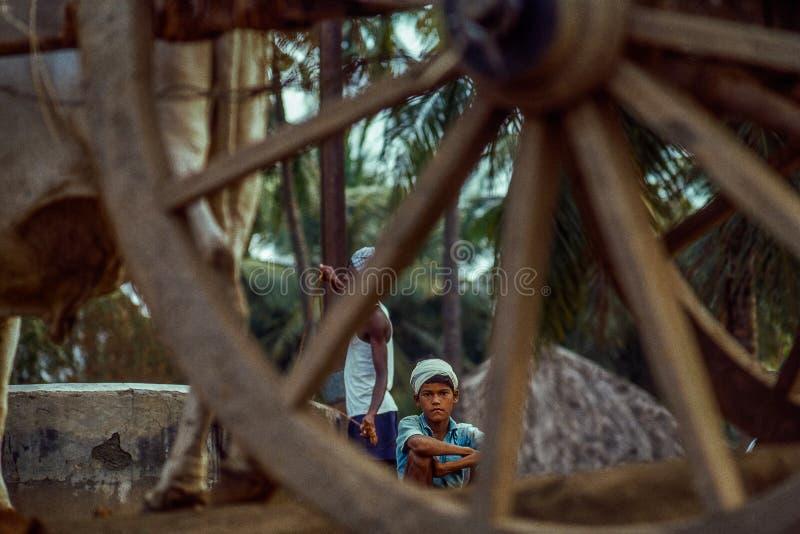 葡萄酒照片1983巨大的老木车轮和农夫男孩 库存图片