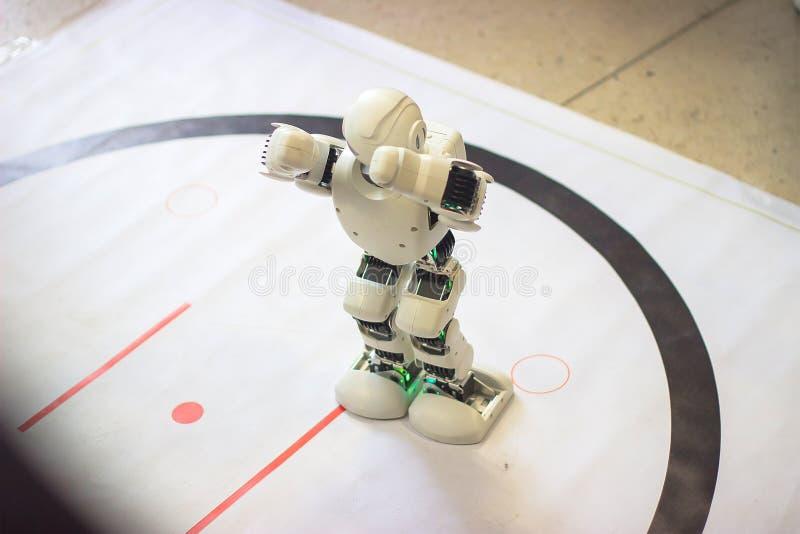 葡萄酒玩具机器人 免版税库存照片