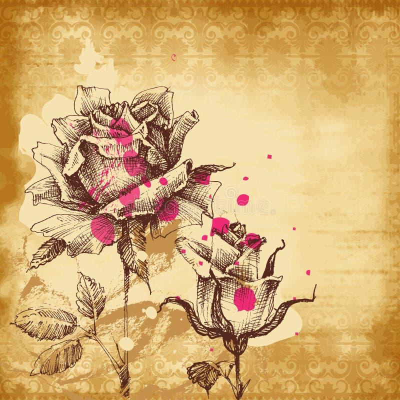 葡萄酒玫瑰背景,老纸背景 库存例证