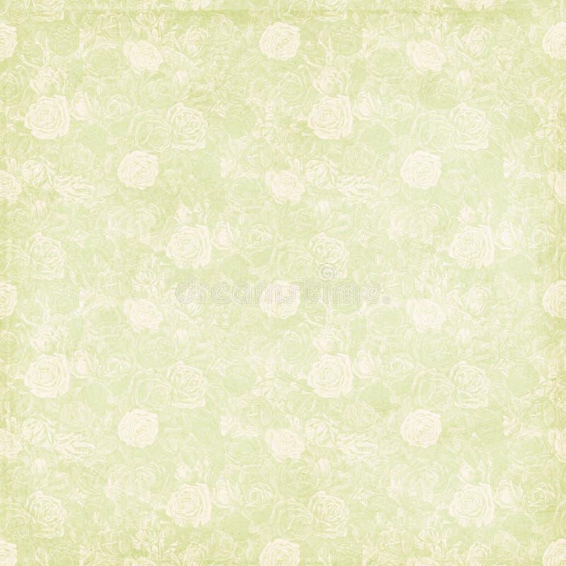 葡萄酒破旧的别致的绿色玫瑰色背景纹理 免版税库存照片