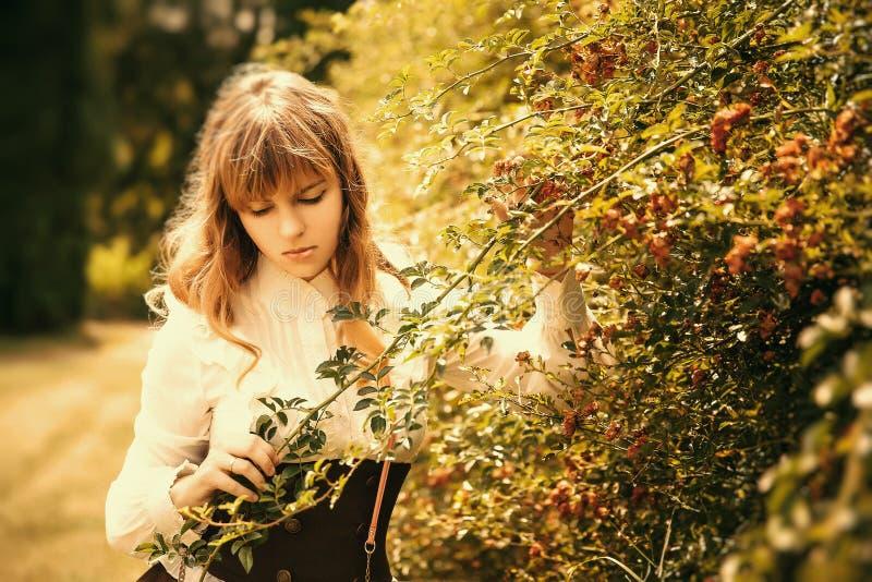 葡萄酒礼服的美女在夏令时公园 玫瑰 库存照片